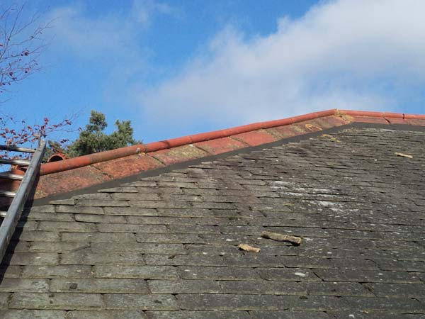 Roof Renovation of Hip and Ridge Tiles After Photo - Bournemouth Roofing Dorset