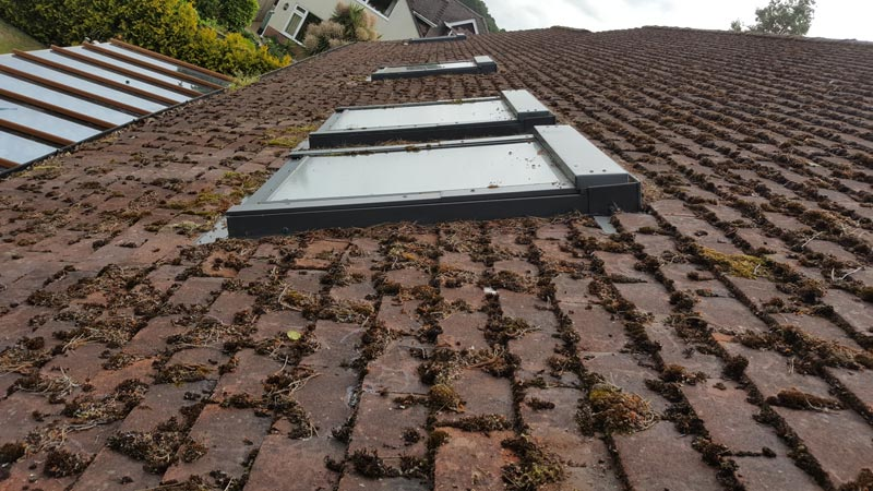 Moss On Roof - Bournemouth Roofing Dorset